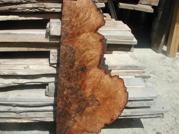 Maple Burl Wood Slabs Wiry32ibw
